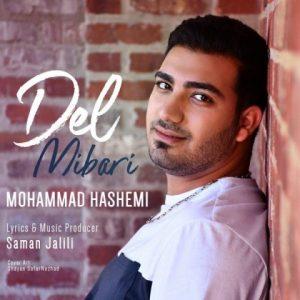 دانلود آهنگ جدید محمد هاشمی به نام دل میبری