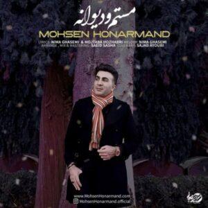 دانلود آهنگ جدید محسن هنرمند به نام مستم و دیوانه